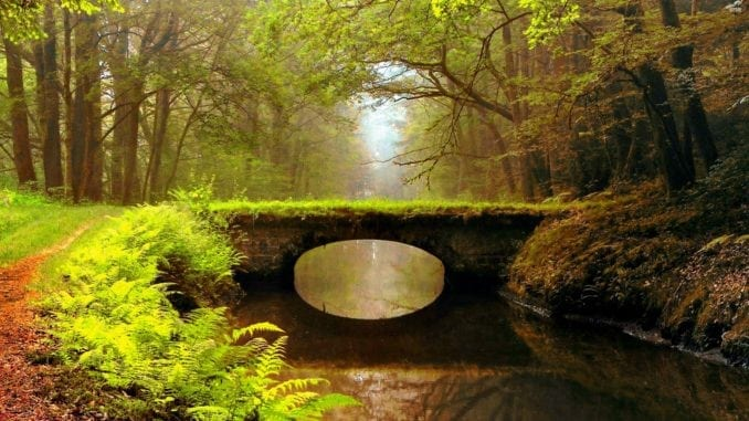 Mindfulness and Situational Awareness