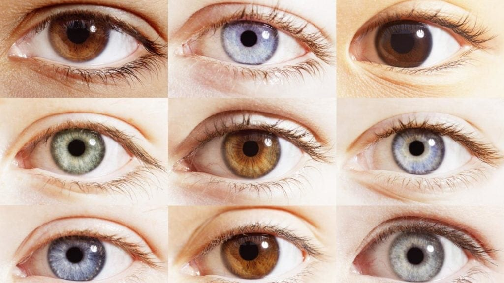 What Color Are My Eyes Chart Denmarpulsar