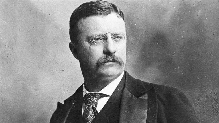 teddy Roosevelt accomplishments